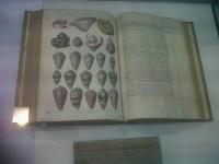 livre issu de la Biliothèque de la reine Marie-Antoinette